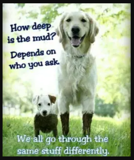 How deep is the mud? Depends on who you ask. We all go through the same stuff differently. #AnitaNess @EMBRACECalmerKids.com.au