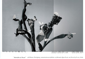 「パスカルの蝶たち」展 2021年5月1日→9日 来館ご予約受付のご案内