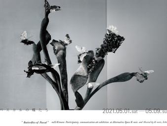 「パスカルの蝶たち」展 2021年5月1日→9日 ご観覧の中止について