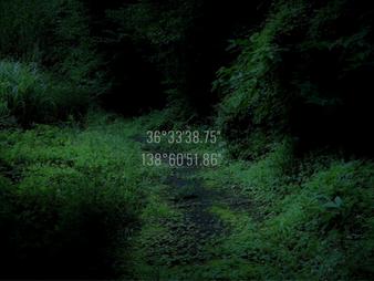 軽井沢の森に、オルタナティブ・スペースKの家を開設しました。