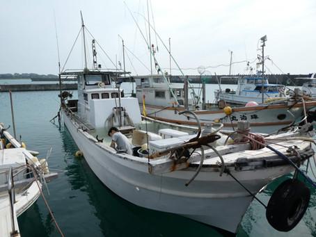 サラサの船を紹介!