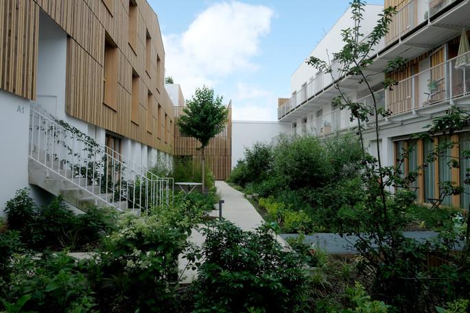Le jardin collectif du rdc au Jardin divers