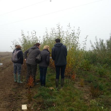 Choix des arbes en pépinière avec les habitants