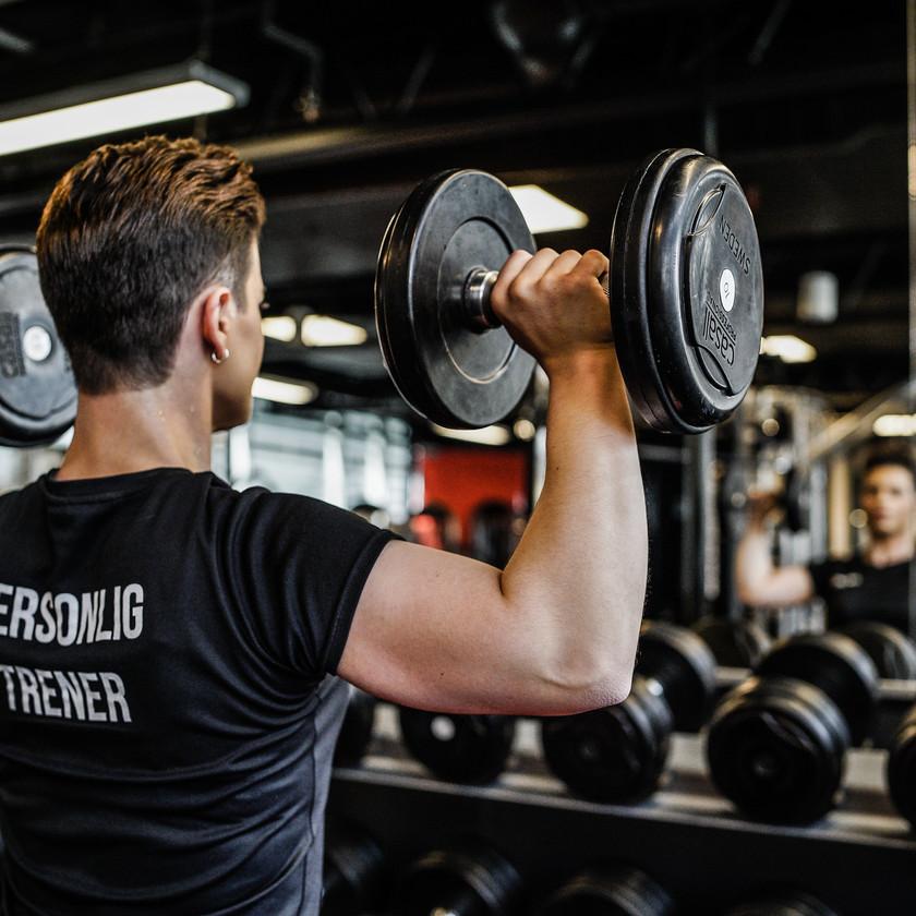 Muskler hos Mudo gym