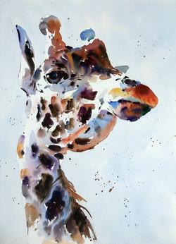 Giraffe Elegance