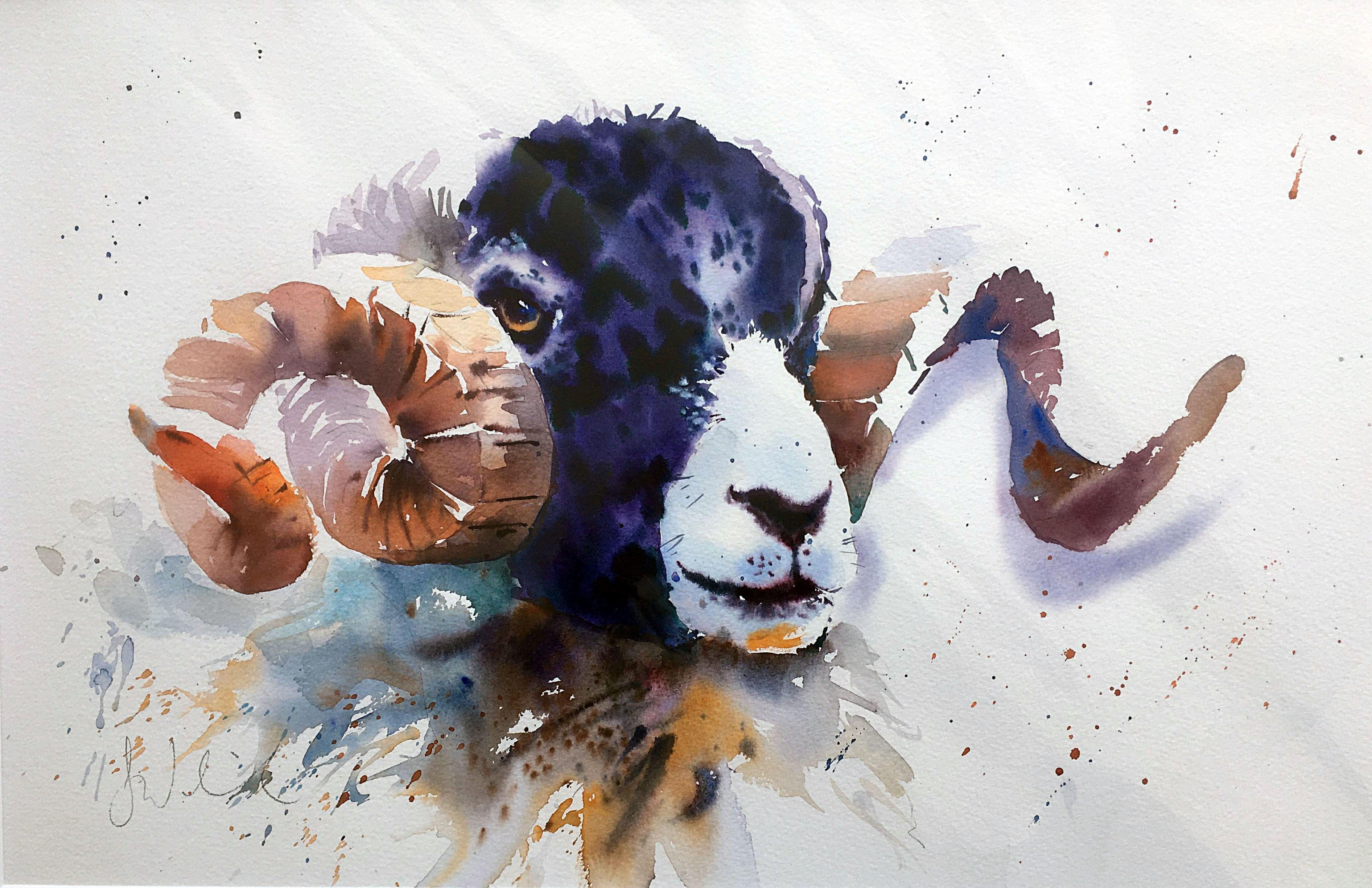 Regal Ram