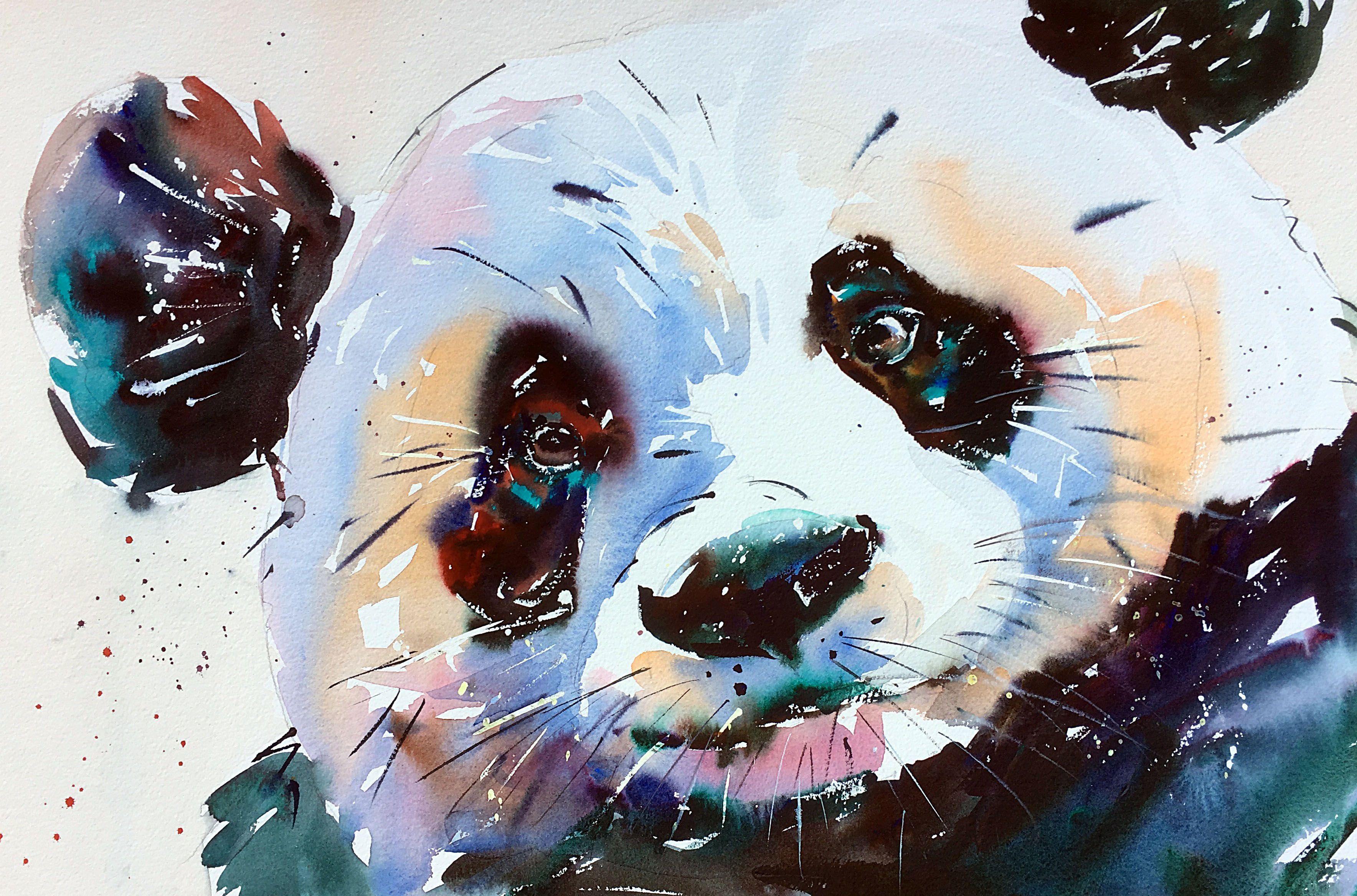 Panda-ing