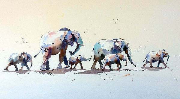 Elephants 36.jpg