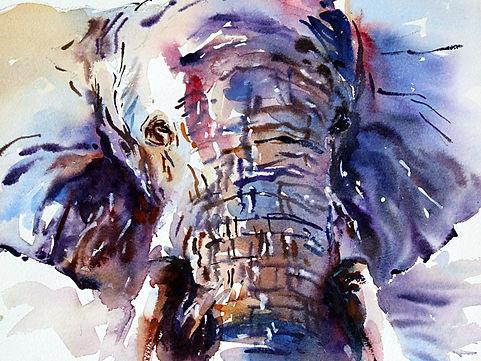 Elephants 6.jpg