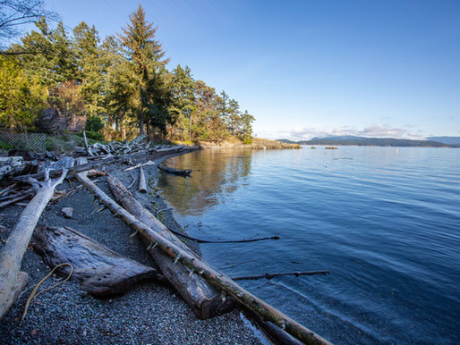 Buying Property in the San Juans