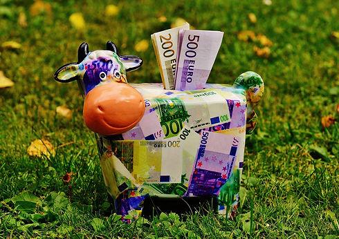 piggy-bank-1510525_1920.jpg