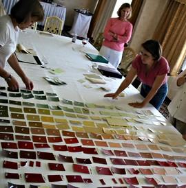 C2 Paint color palette development