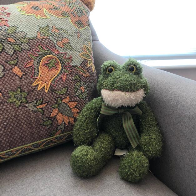 Even Mr Frog enjoys his stylish perch