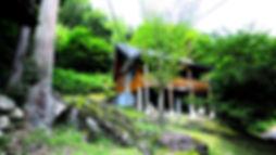 ぶな1_edited.jpg