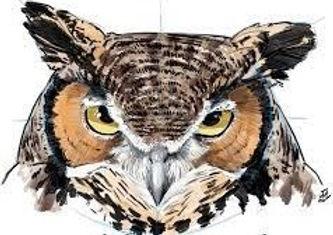 owl%2520logo%2520wildwonder%252021_edited_edited.jpg