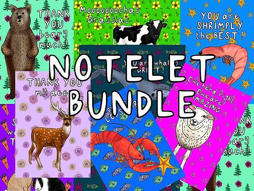 Notelet bundle -2 packs - SAVE £1.00