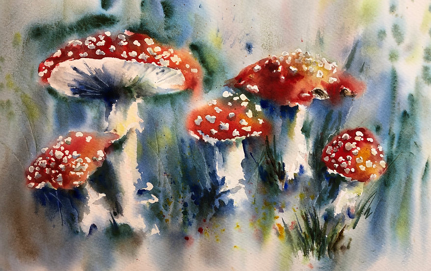 'Toadstools & Fungi ' with Nicky Hunter - 24th November 2020
