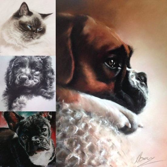 Pet Portraits in Pastel with Louise Brown - 26th & 27th November 2020