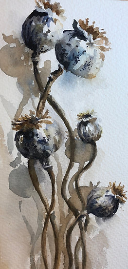 'Poppy Seed Heads' with Nicky Hunter - 29th October 2020