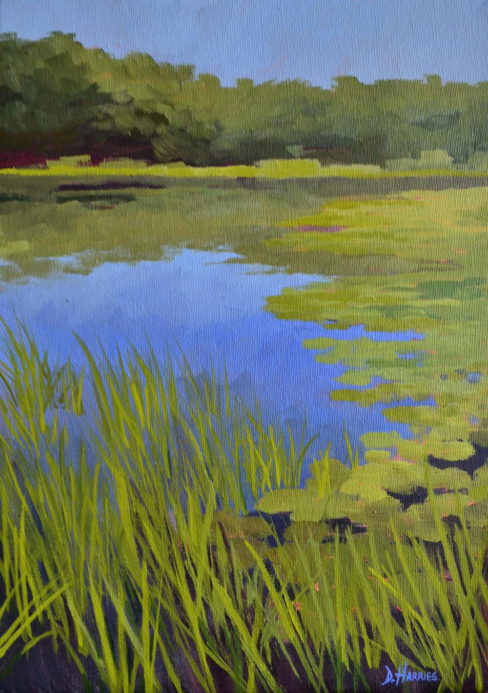 Bosherston-Lily-Ponds-side-view-1