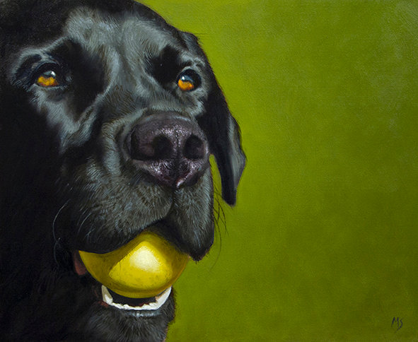 Dog Portraits in Oils with Mike Skidmore - 3rd & 4th November 2020