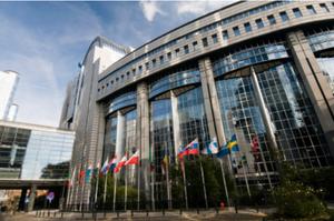 SME, International, Business, Development, Navigator, Consulting, EU
