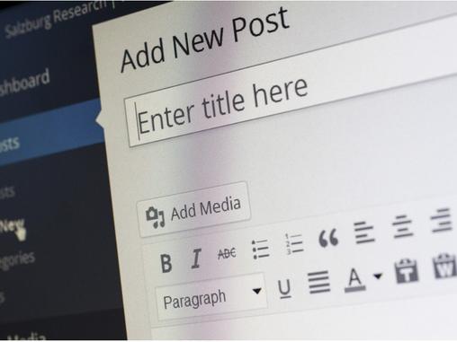 Navigator recruiting a Wordpress Web Developer in Cyprus