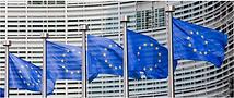 EU Programmes Manager.PNG