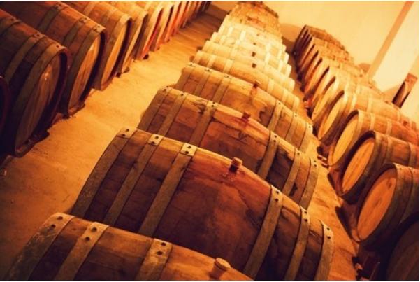 Wine, Cyprus, Food, Navigator, Training, Consulting, Innovation