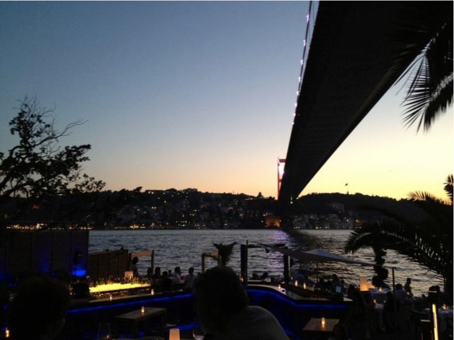 Turkey, Finance, Electronics, Investment, Consulting, Due Diligence, Trade