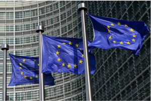 Consulting, Europe, Web, Navigator, Entrepreneur, Entrepreneurship, EU, Network