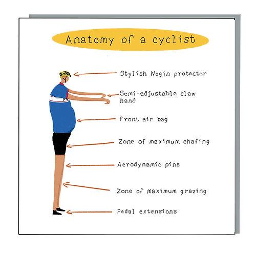 Anatomy of a cyclist