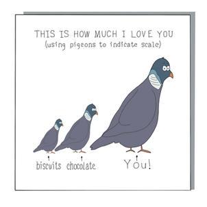 Pigeon love.jpg