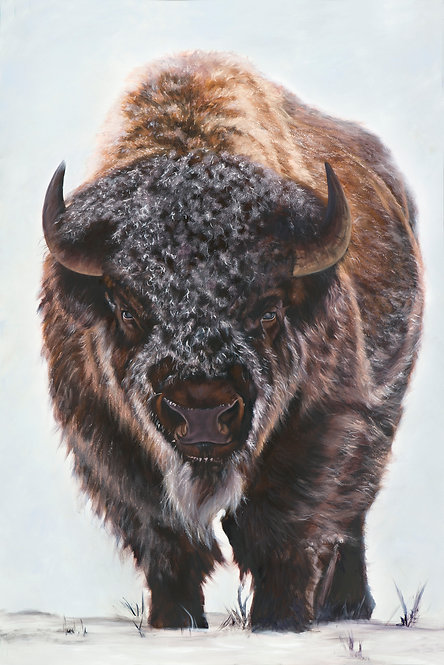American Bison painting of buffalo in snow in browns, blacks and created by artist Travis Knight