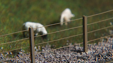 Model fencing with sheep