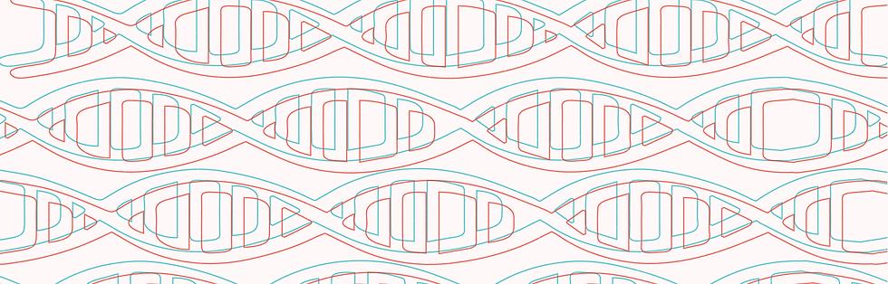 qm somos_nosso DNA.png