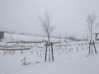 春分の日、冬景色