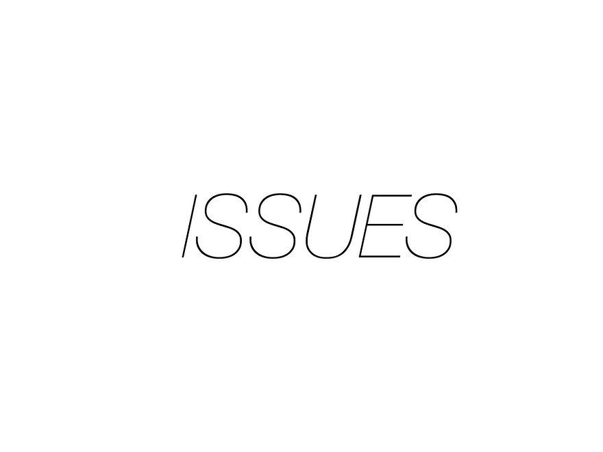 ISSUES 2.jpg