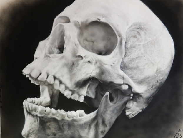 Airbrush Skull airbrushed airbrushing
