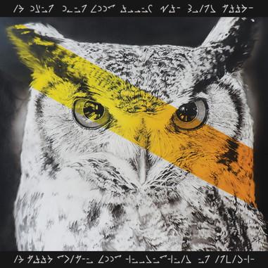 Airbrush Owl airbrushed airbrushing