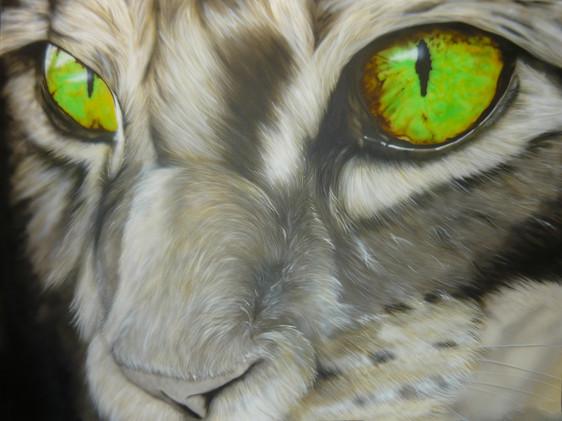 Airbrush Cat airbrushed airbrushing