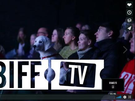 BIFF TV