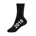 2018 Sock.png
