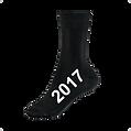 2017 Sock.png