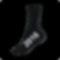2016 Sock.png