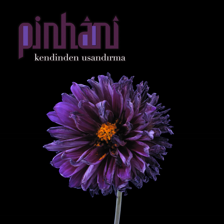 Pinhani - Kendinden Usandırma