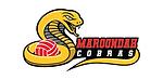 Cobras-Logo.png