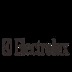 ELECTROLUX KOREA LIMITED - Platinum