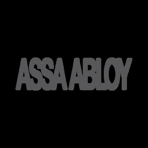 ASSA ABLOY Entrance Systems - Platinum