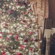 Christmas Tree Lights - 10x10